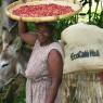 Haitian Ranquitte Coffee