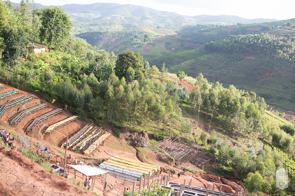 Burundi Coffee Origin